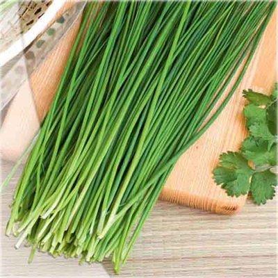 Шнитт-лук – кладезь зелени
