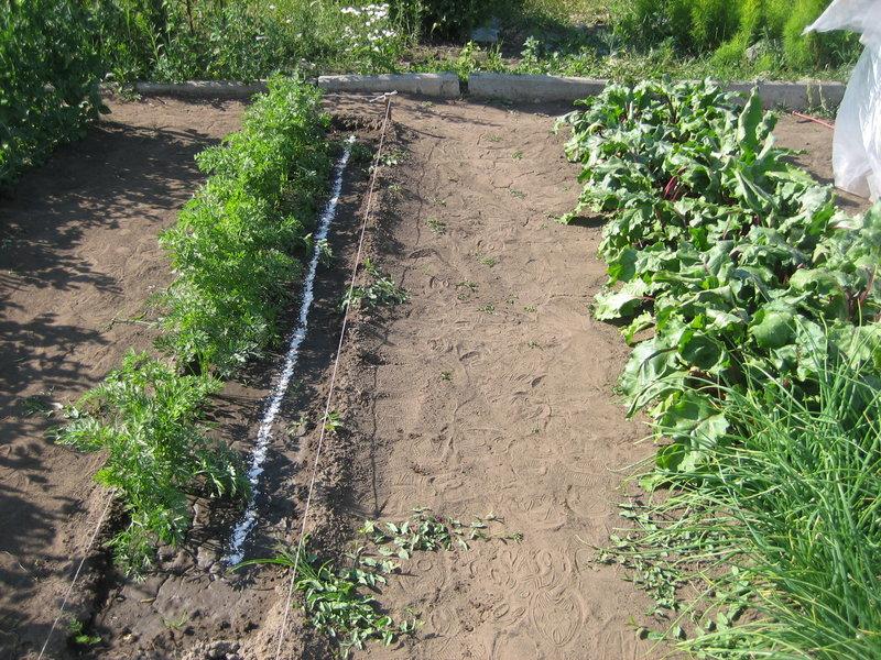 Копала огород